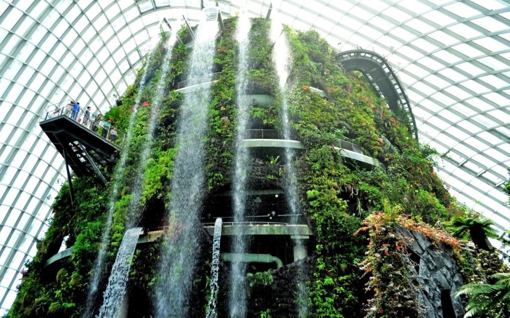 Flower Dome và Cloud Forest