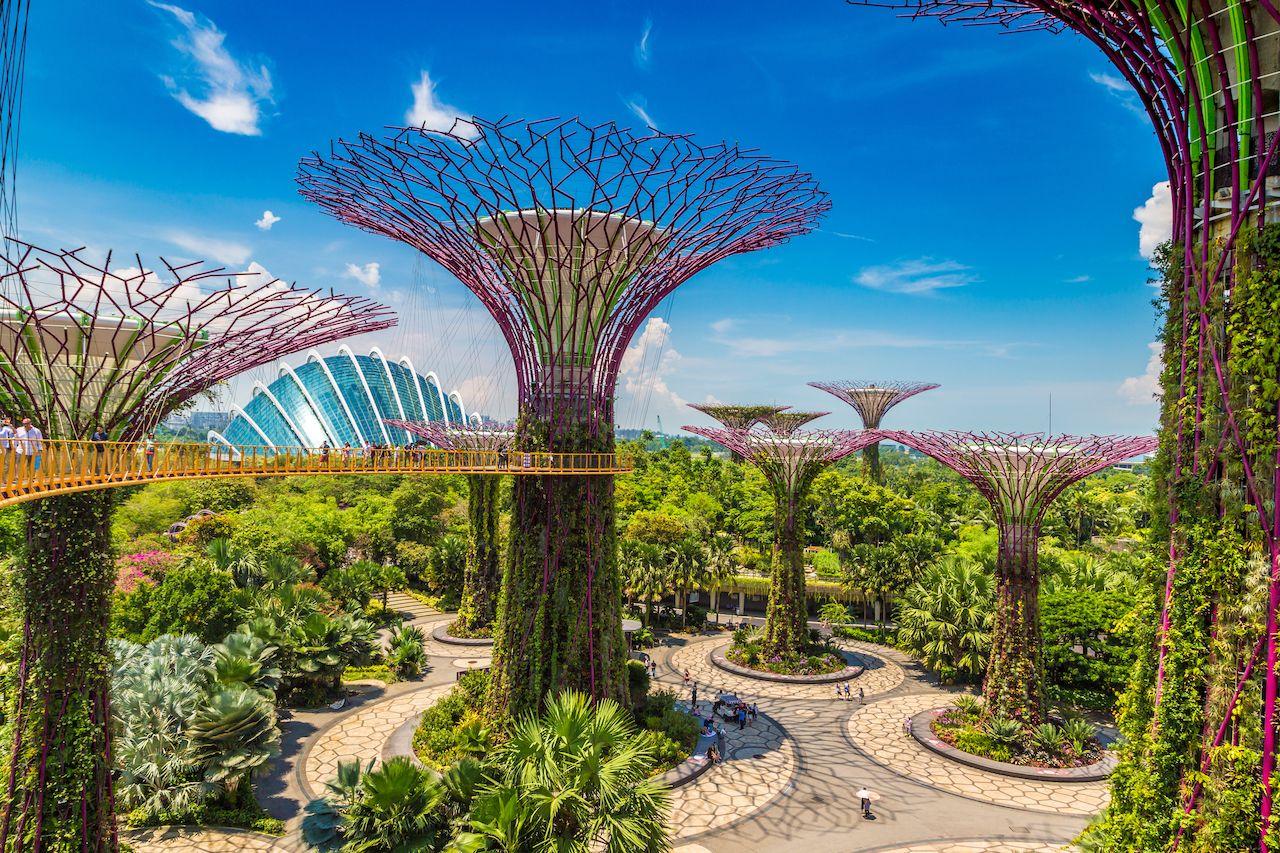 Du lịch Singapore tham quan Siêu cây khổng lồ