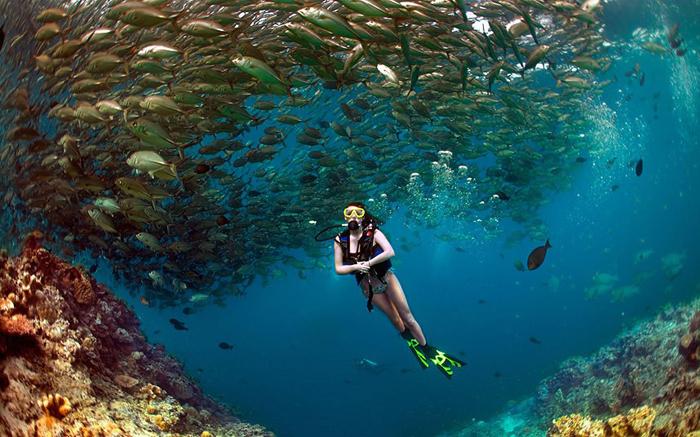 Đảo Sipadan - Thiên đường lặn biển